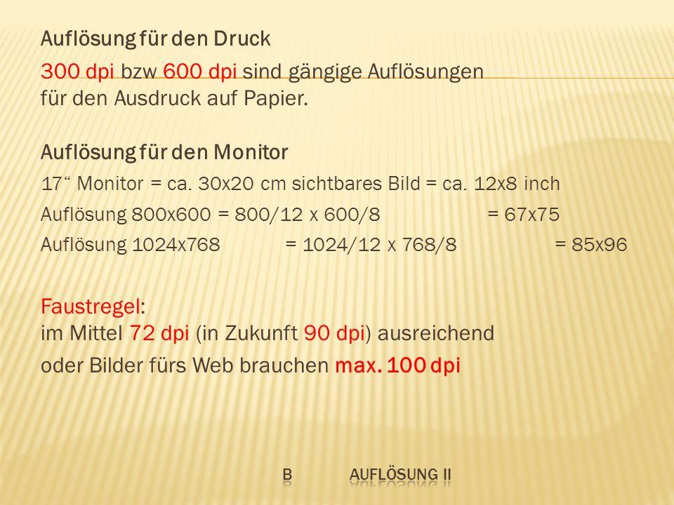 Auflösung für den Druck 300 dpi bzw 600 dpi sind gängige Auflösungen für den Ausdruck auf Papier. Auflösung für den Monitor 17 Monitor = ca. 30x20 cm