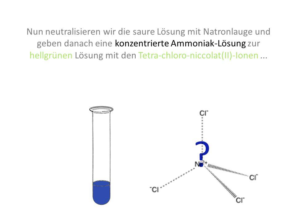 Nun neutralisieren wir die saure Lösung mit Natronlauge und geben danach eine konzentrierte Ammoniak-Lösung zur hellgrünen Lösung mit den Tetra-chloro