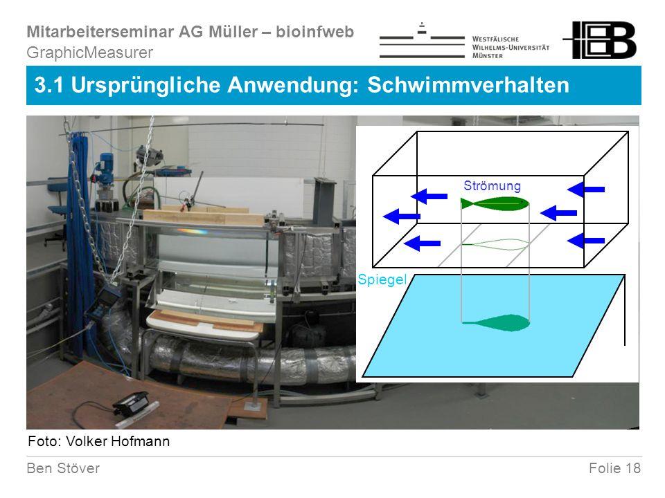 Mitarbeiterseminar AG Müller – bioinfweb Folie 18Ben Stöver 3.1 Ursprüngliche Anwendung: Schwimmverhalten GraphicMeasurer Strömung Spiegel Foto: Volker Hofmann