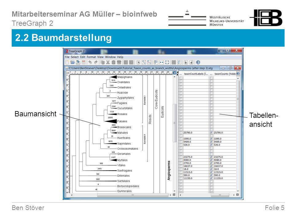 Mitarbeiterseminar AG Müller – bioinfweb Folie 5Ben Stöver 2.2 Baumdarstellung TreeGraph 2 Baumansicht Tabellen- ansicht