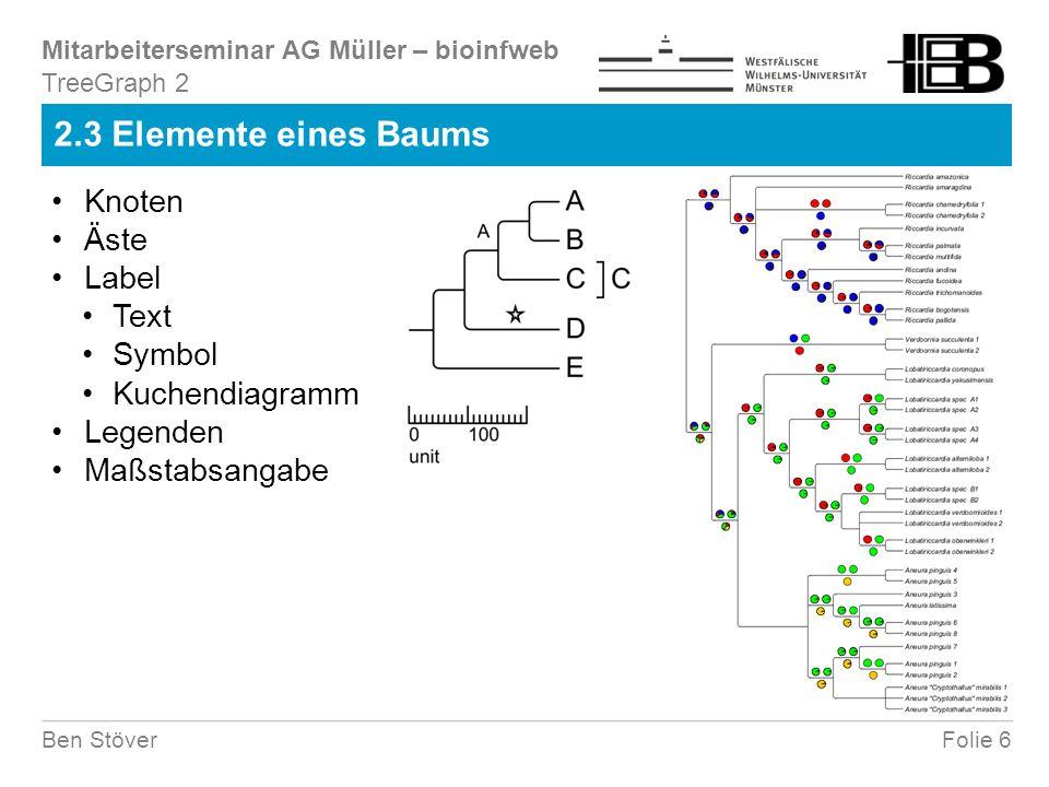 Mitarbeiterseminar AG Müller – bioinfweb Folie 6Ben Stöver 2.3 Elemente eines Baums TreeGraph 2 Knoten Äste Label Text Symbol Kuchendiagramm Legenden Maßstabsangabe