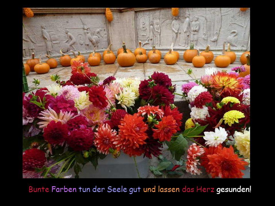 Fotos und Texte: Renate Harig Blog: http://etaner-renateseckchen.blogspot.com Musik: Colorful Dreams aus der CD Golden Season mit frdl.