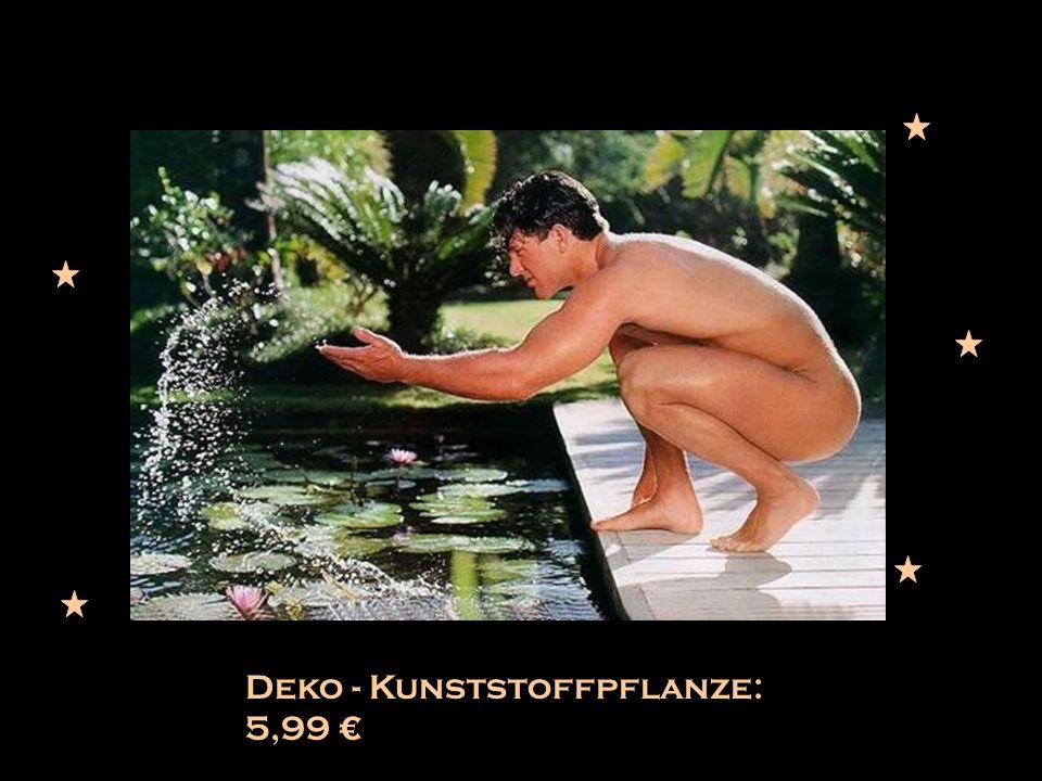 Deko - Kunststoffpflanze: 5,99