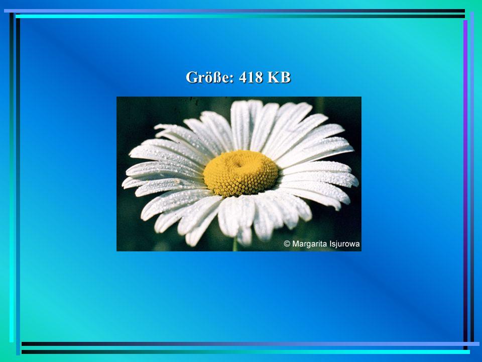 GIF GIF = Graphics Interchange Format 1987 von CompuServe entwickelt neben JPEG wichtigstes Format für Bilder im WWW Vorteil: verlustfreie Kompression auf 256 Farben beschränkt plattform- und hardwareunabhängig Nachteil: Lizenzpflicht seit 1994