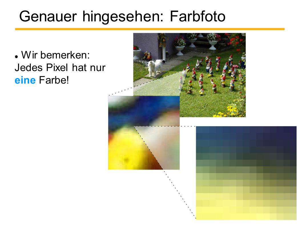 Genauer hingesehen: Farbfoto Wir bemerken: Jedes Pixel hat nur eine Farbe!