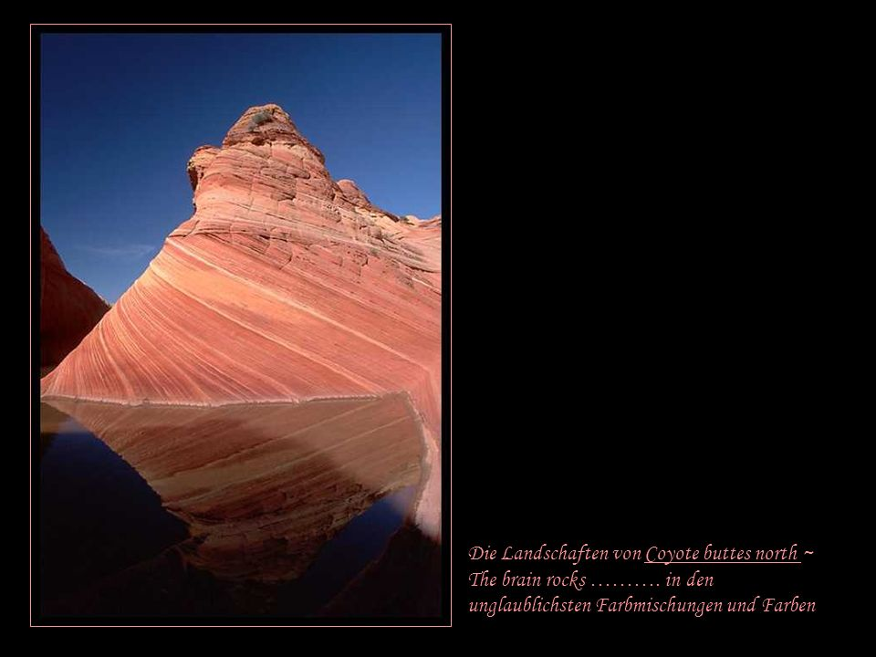 Die Landschaften von Coyote buttes north ~ The brain rocks ……….