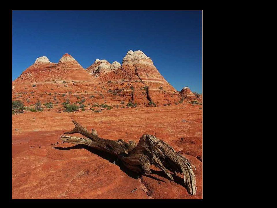Die Landschaften von Coyote buttes north ~ The brain rocks ……….