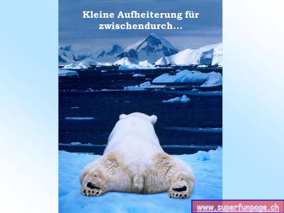 www.superfunpage.ch Nein – Du mußt diese Präsentation an niemanden weitersenden.