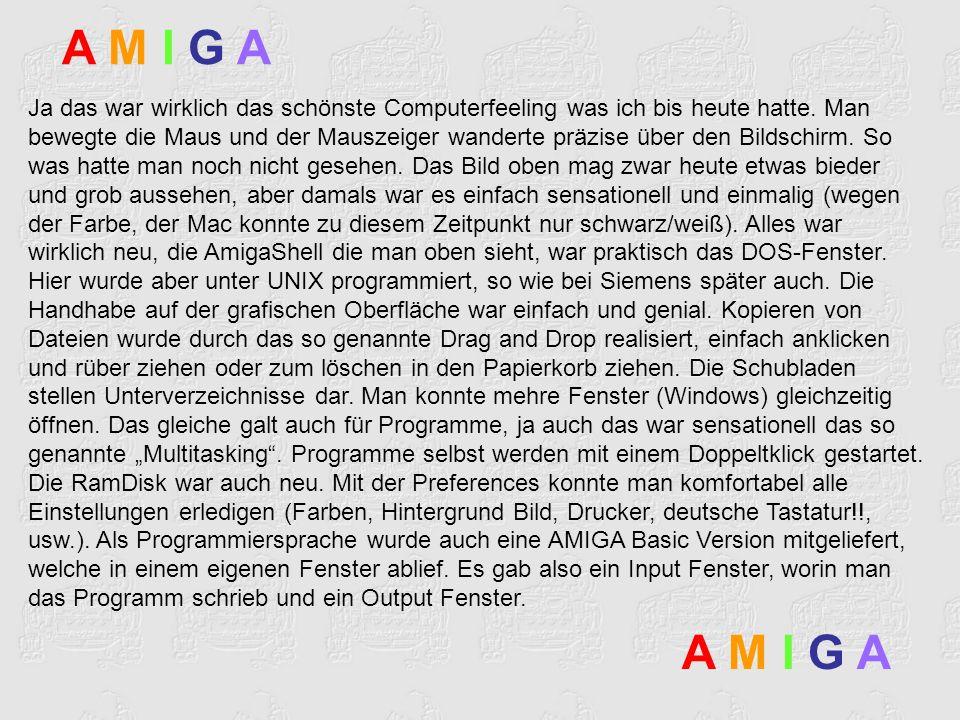 A M I G AA M I G A A M I G AA M I G A Dort lief das Programm nach dem Start ab.
