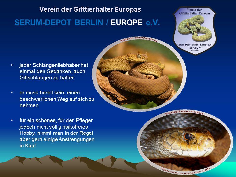 jeder Schlangenliebhaber hat einmal den Gedanken, auch Giftschlangen zu halten er muss bereit sein, einen beschwerlichen Weg auf sich zu nehmen für ei