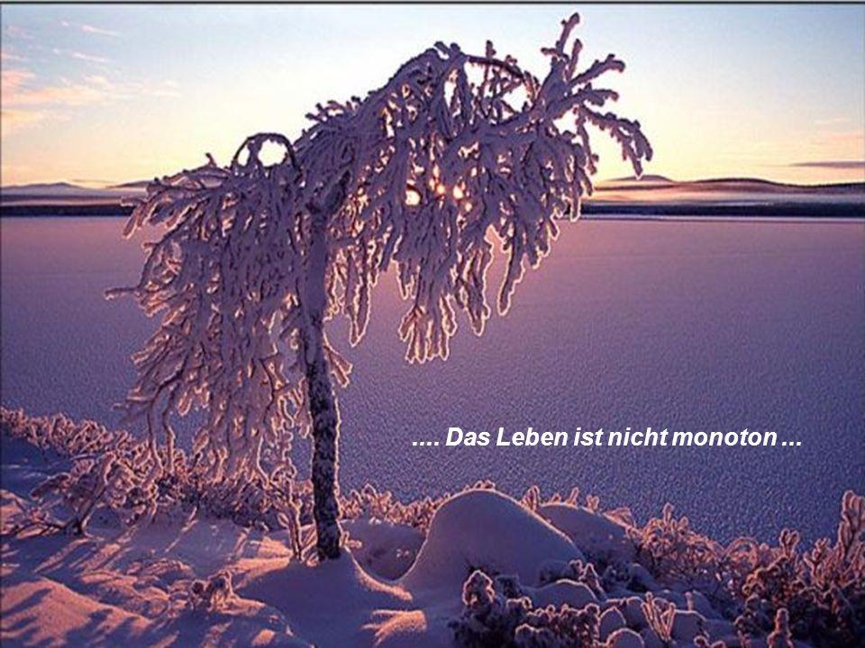.... Das Leben ist nicht monoton...