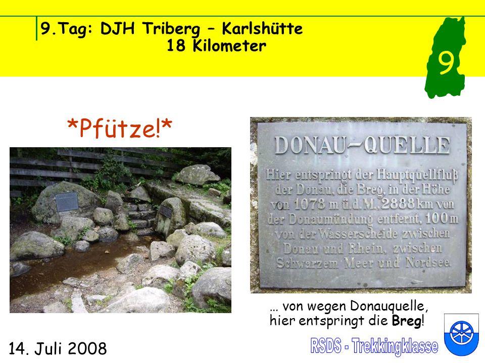 9.Tag: DJH Triberg – Karlshütte 18 Kilometer 14. Juli 2008 9 *Pfütze!* … von wegen Donauquelle, hier entspringt die Breg!