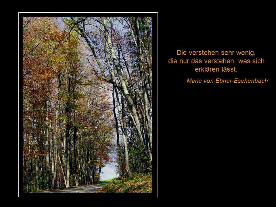 Das Glück deines Lebens hängt von der Beschaffenheit deiner Gedanken ab. Mark Aurel