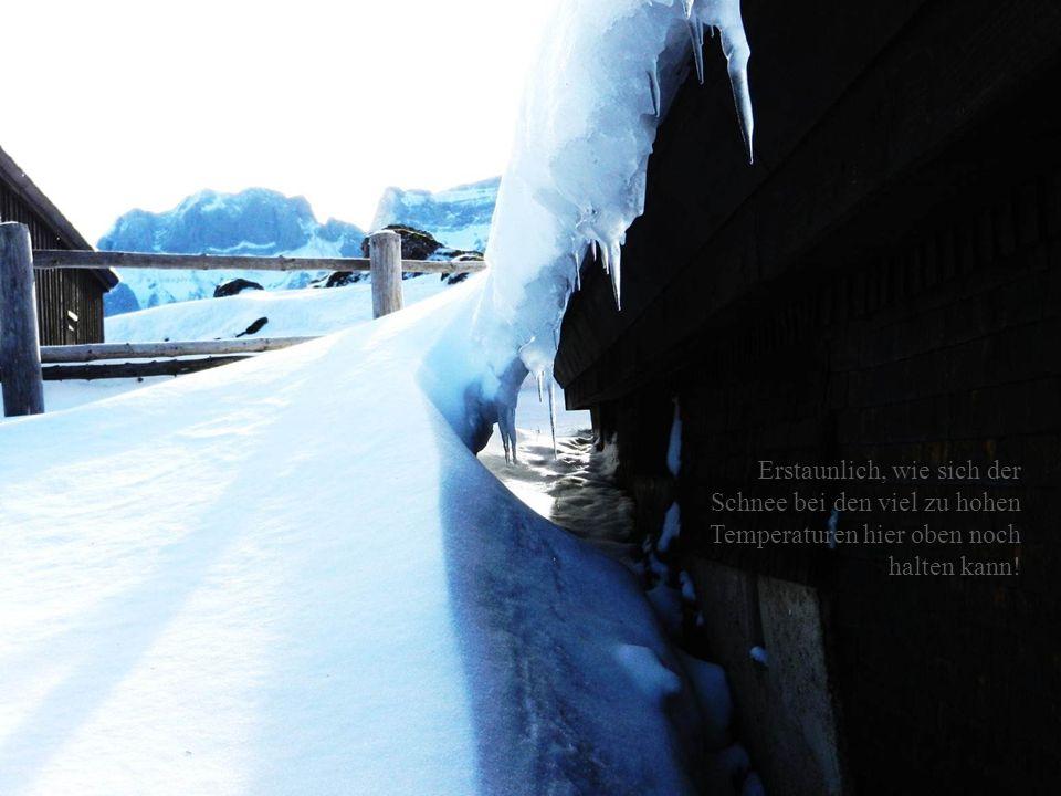 Erstaunlich, wie sich der Schnee bei den viel zu hohen Temperaturen hier oben noch halten kann!