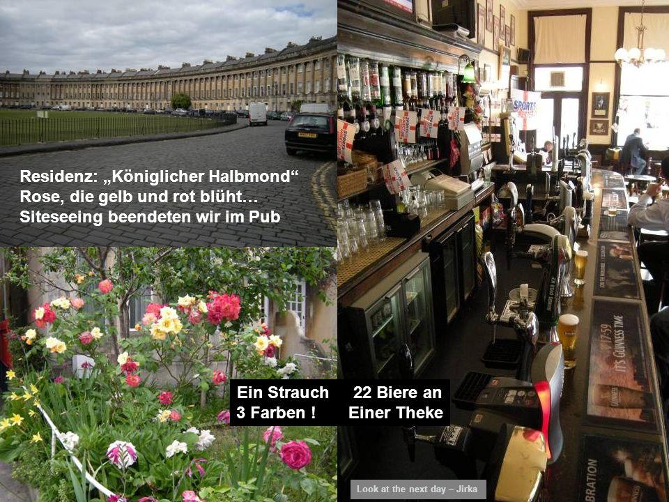 Residenz: Königlicher Halbmond Rose, die gelb und rot blüht… Siteseeing beendeten wir im Pub Ein Strauch 22 Biere an 3 Farben .