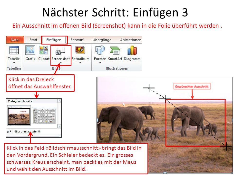 Nächster Schritt: Einfügen 3 Ein Ausschnitt im offenen Bild (Screenshot) kann in die Folie überführt werden. Klick in das Feld «Bildschirmausschnitt»