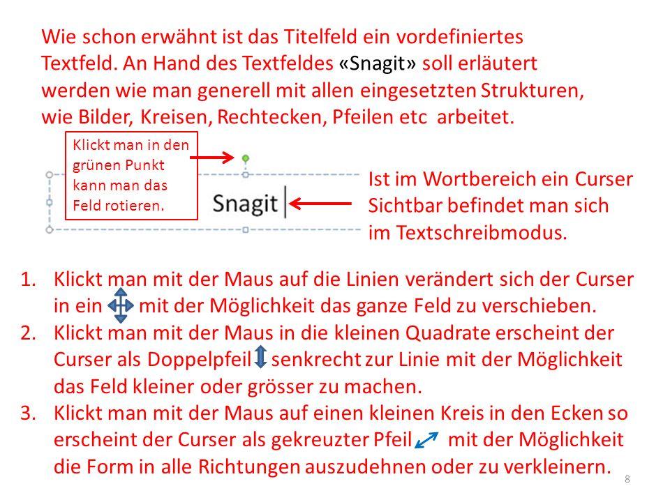 Wie schon erwähnt ist das Titelfeld ein vordefiniertes Textfeld. An Hand des Textfeldes «Snagit» soll erläutert werden wie man generell mit allen eing