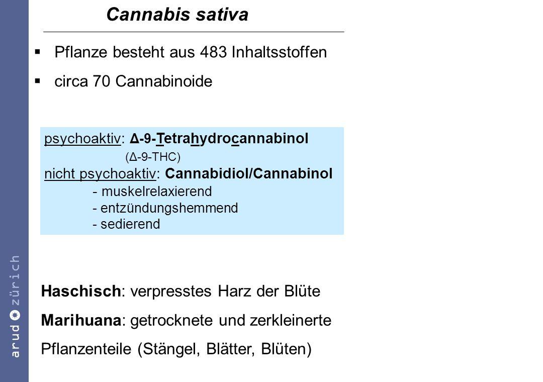 Diathese-Stress-Modell t Cannabiskonsum Dopamin-Ausschüttung Vulnerabilitäts- Schwelle Positivsymptomatik Δ-9-THC -induzierte Hemmung GABA-erger Neurone sollen im mesolimbischen System zu einer entscheidenden Erhöhung der Dopamin-Aktivität führen (Simon, 2004)