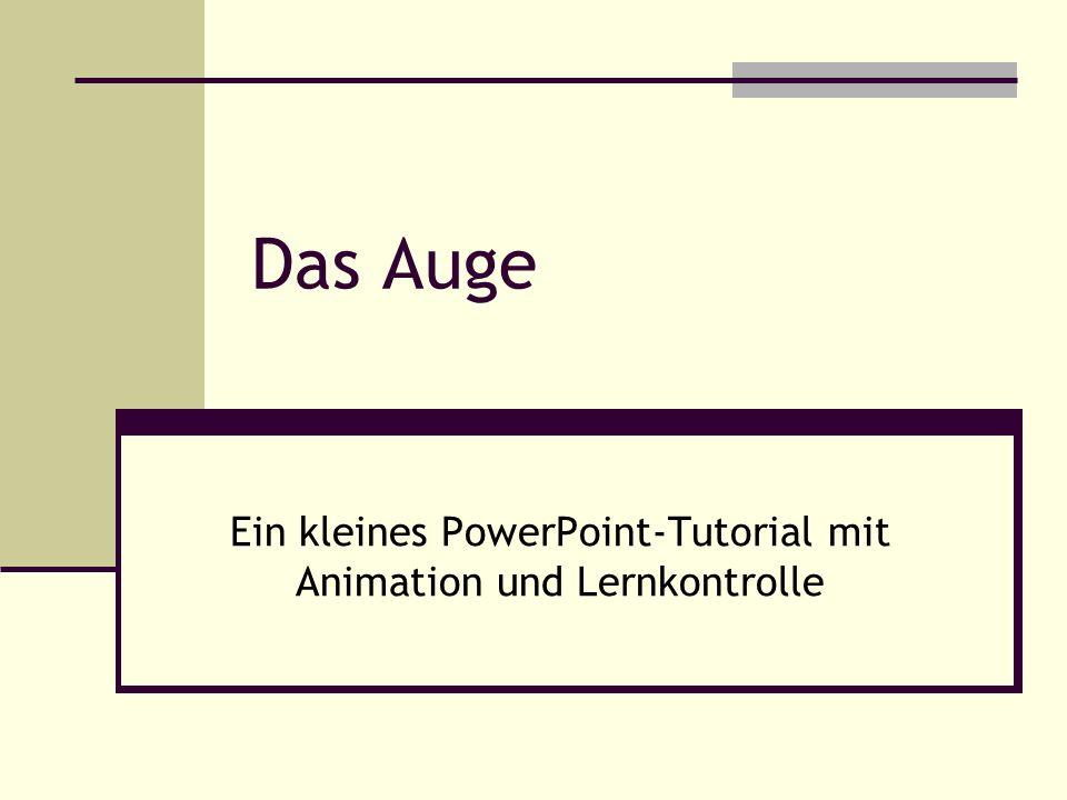 Das Auge Ein kleines PowerPoint-Tutorial mit Animation und Lernkontrolle