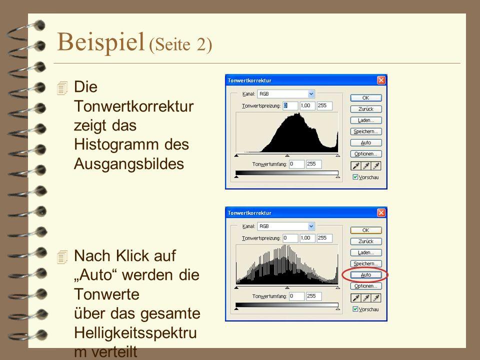 Beispiel (Seite 2) Die Tonwertkorrektur zeigt das Histogramm des Ausgangsbildes Nach Klick auf Auto werden die Tonwerte über das gesamte Helligkeitsspektru m verteilt