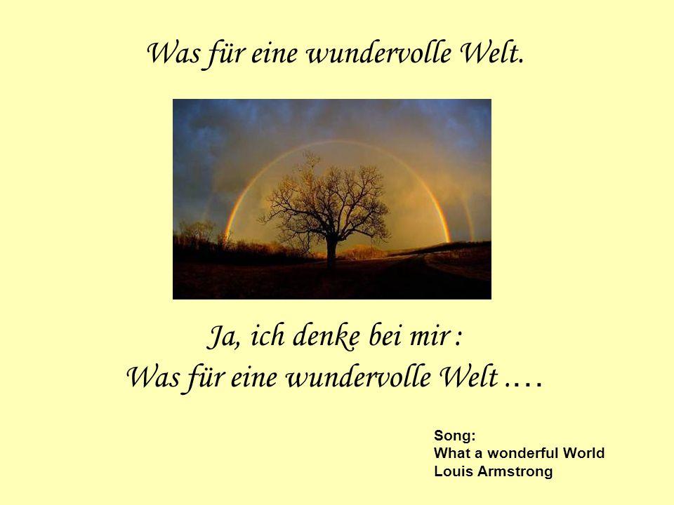 Was für eine wundervolle Welt. Ja, ich denke bei mir : Was für eine wundervolle Welt. … Song: What a wonderful World Louis Armstrong
