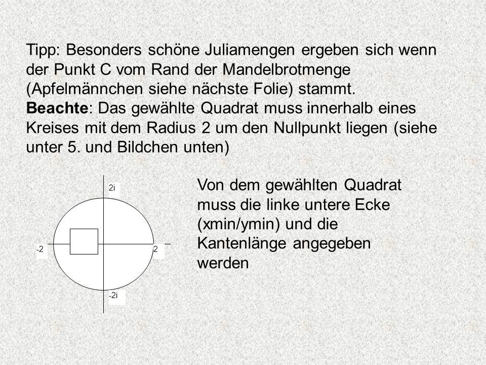 Tipp: Besonders schöne Juliamengen ergeben sich wenn der Punkt C vom Rand der Mandelbrotmenge (Apfelmännchen siehe nächste Folie) stammt. Beachte: Das