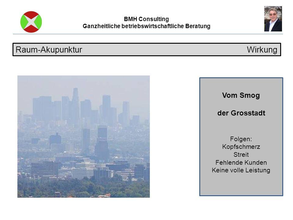 BMH Consulting Ganzheitliche betriebswirtschaftliche Beratung Vom Smog der Grosstadt Folgen: Kopfschmerz Streit Fehlende Kunden Keine volle Leistung Raum-Akupunktur Wirkung