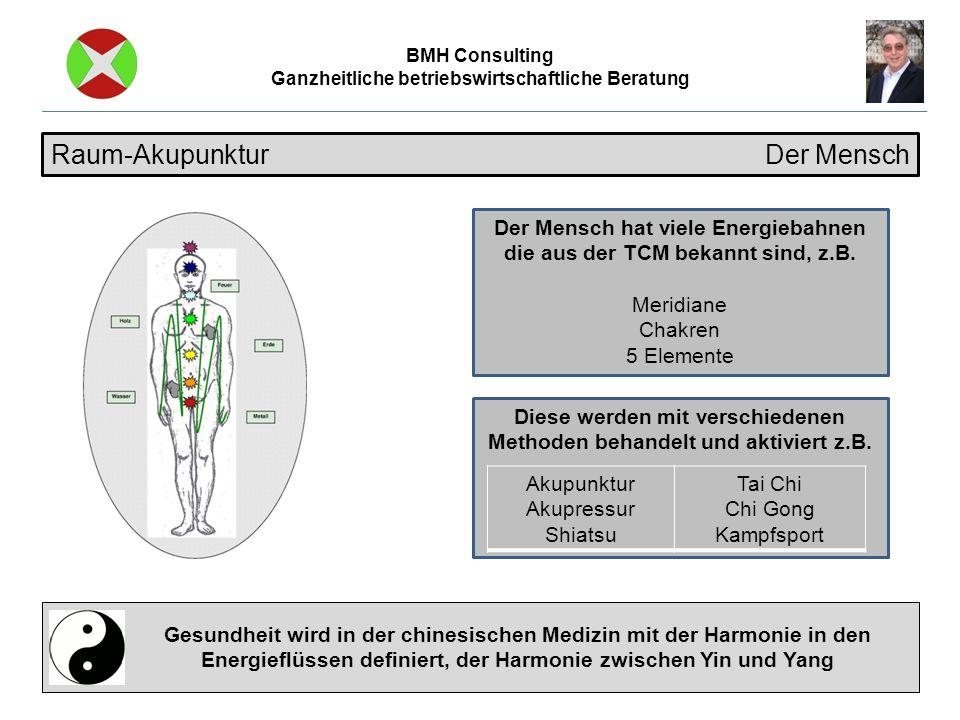 BMH Consulting Ganzheitliche betriebswirtschaftliche Beratung Raum-Akupunktur Der Mensch Gesundheit wird in der chinesischen Medizin mit der Harmonie in den Energieflüssen definiert, der Harmonie zwischen Yin und Yang Der Mensch hat viele Energiebahnen die aus der TCM bekannt sind, z.B.