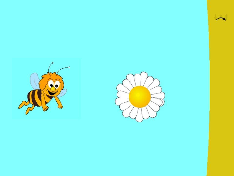 Schwierigere Einstellung: Hintergrundbild Kleinere Objekte Einfacher Mausklick Bewegung der Zielobjekte