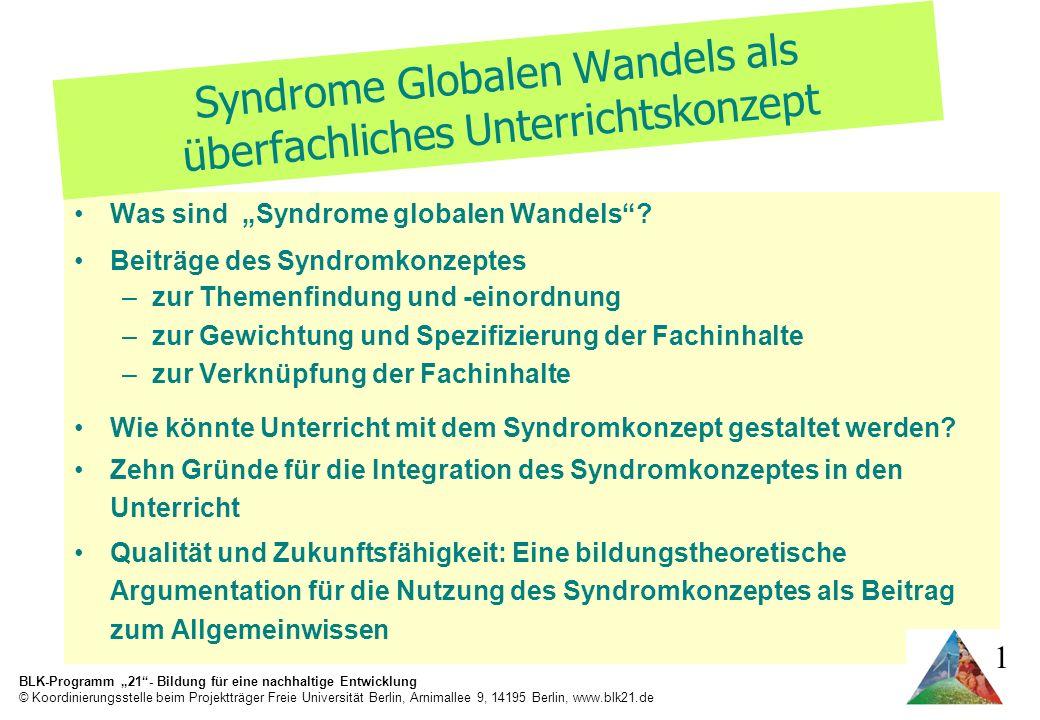 Was sind Syndrome globalen Wandels.