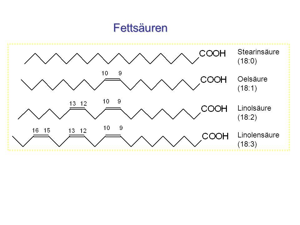 Fettsäuren Stearinsäure (18:0) Oelsäure (18:1) Linolsäure (18:2) Linolensäure (18:3)