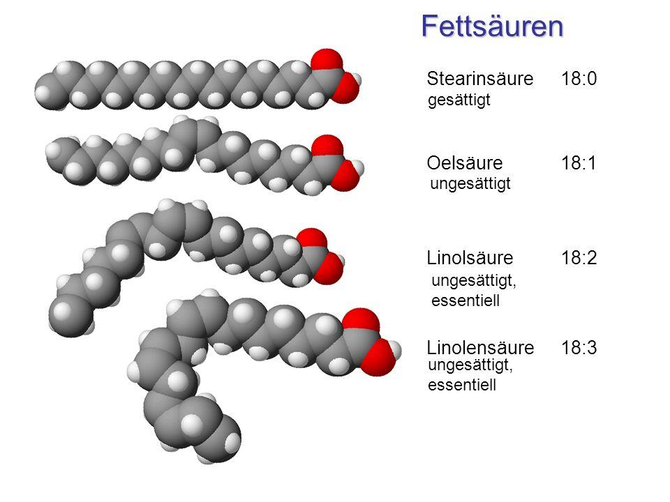 Fettsäuren Stearinsäure 18:0 Oelsäure 18:1 Linolsäure 18:2 Linolensäure18:3 gesättigt ungesättigt ungesättigt, essentiell