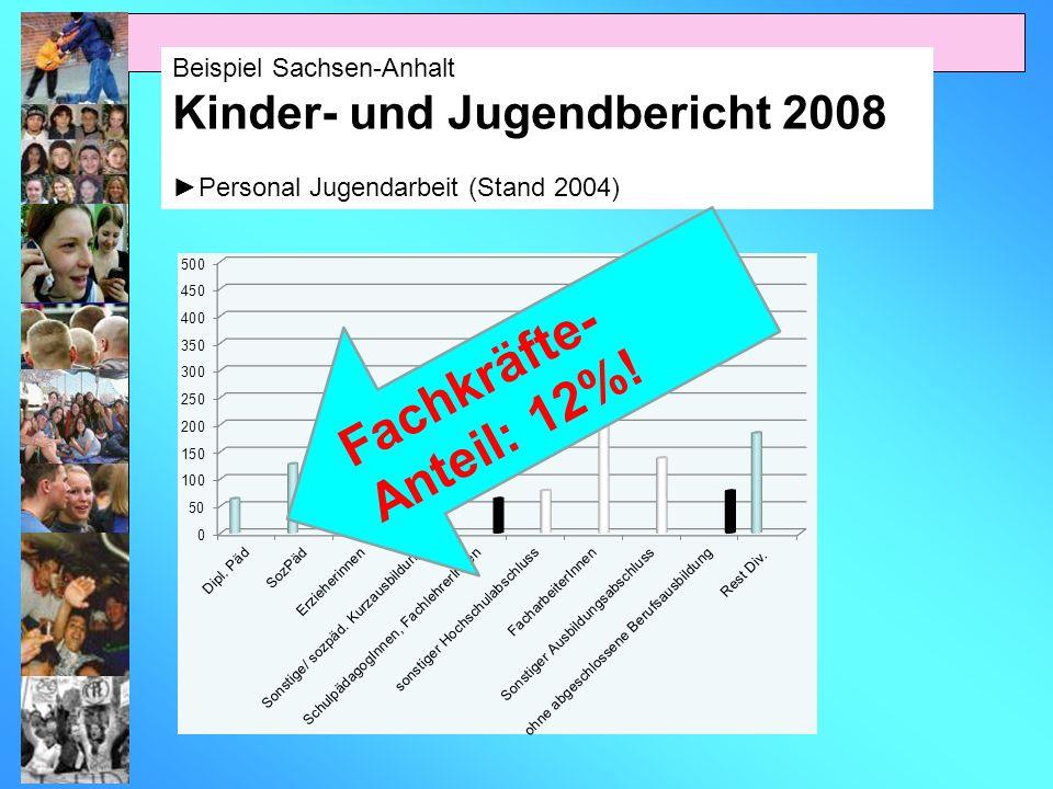 Beispiel Sachsen-Anhalt Kinder- und Jugendbericht 2008 Personal Jugendarbeit (Stand 2004) Fachkräfte- Anteil: 12%!