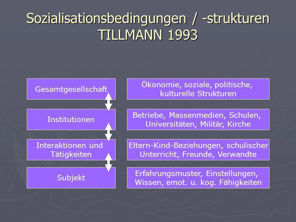 Sozialisationsbedingungen / -strukturen TILLMANN 1993 Subjekt Gesamtgesellschaft Institutionen Interaktionen und Tätigkeiten Erfahrungsmuster, Einstel