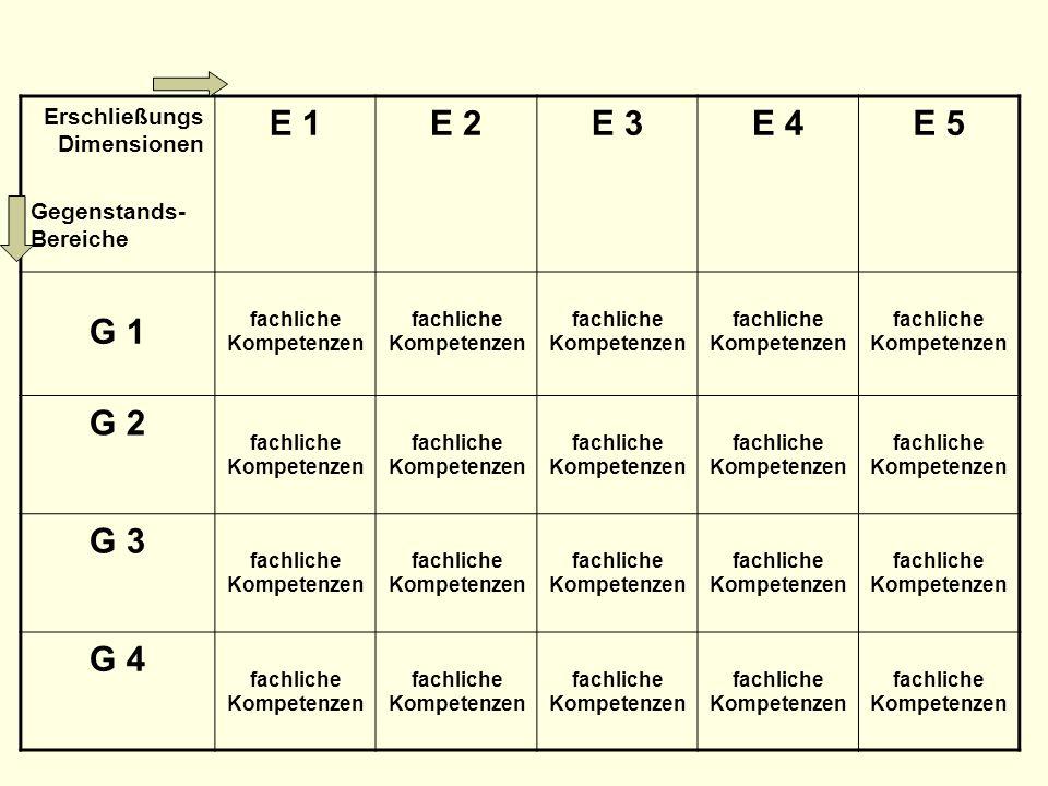 Erschließungs Dimensionen Gegenstands- Bereiche E 1E 2E 3E 4E 5 G 1 fachliche Kompetenzen G 2 fachliche Kompetenzen G 3 fachliche Kompetenzen G 4 fach