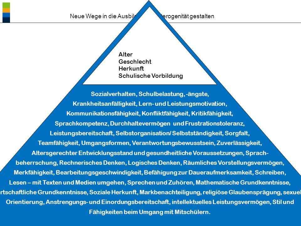 ® Neue Wege in die Ausbildung – Heterogenität gestalten Gewünschte Unterstützung Gisela Westhoff, BIBB, AB 3.3, Entwicklungsprogramme/Modellversuche/Innovation und Transfer – 08.12.2010