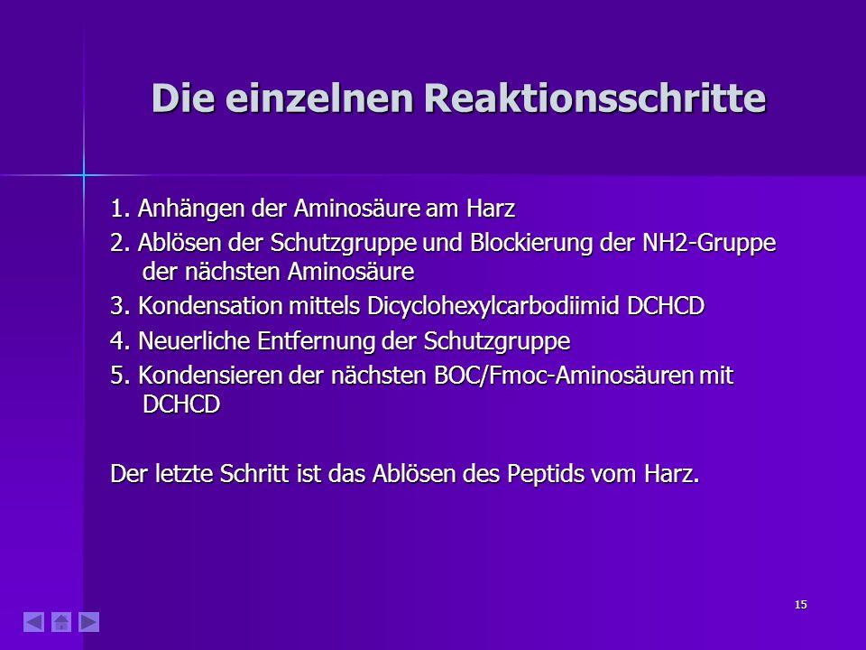 15 Die einzelnen Reaktionsschritte 1.Anhängen der Aminosäure am Harz 2.