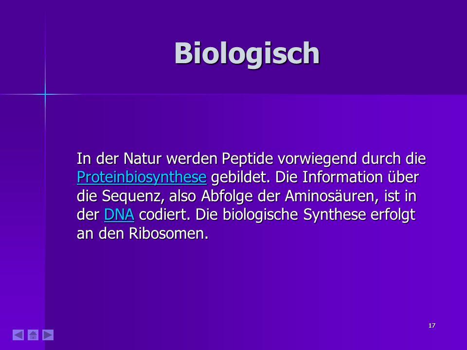 17 Biologisch In der Natur werden Peptide vorwiegend durch die Proteinbiosynthese gebildet.