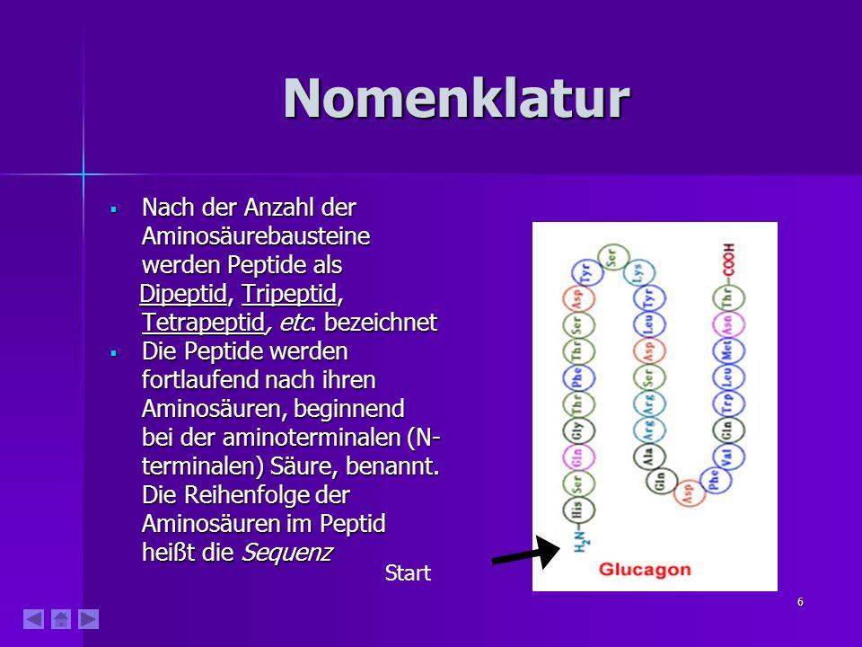 6 Nomenklatur Nach der Anzahl der Aminosäurebausteine werden Peptide als Nach der Anzahl der Aminosäurebausteine werden Peptide als Dipeptid, Tripeptid, Tetrapeptid, etc.
