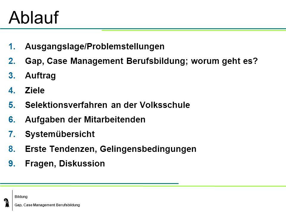 Bildung Gap, Case Management Berufsbildung Ablauf 1.Ausgangslage/Problemstellungen 2.Gap, Case Management Berufsbildung; worum geht es? 3.Auftrag 4.Zi