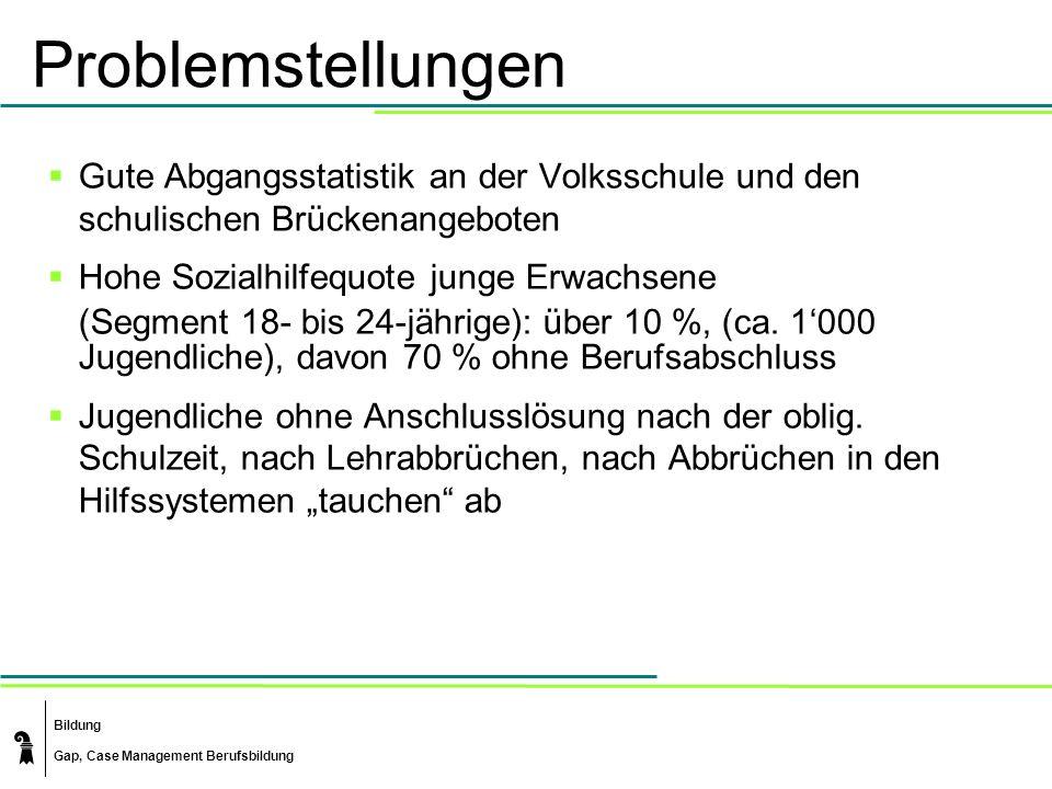 Bildung Gap, Case Management Berufsbildung Problemstellungen Gute Abgangsstatistik an der Volksschule und den schulischen Brückenangeboten Hohe Sozialhilfequote junge Erwachsene (Segment 18- bis 24-jährige): über 10 %, (ca.
