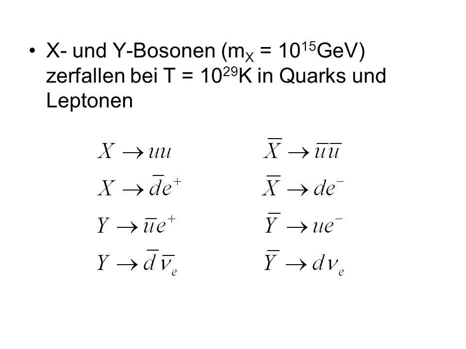 X- und Y-Bosonen (m X = 10 15 GeV) zerfallen bei T = 10 29 K in Quarks und Leptonen