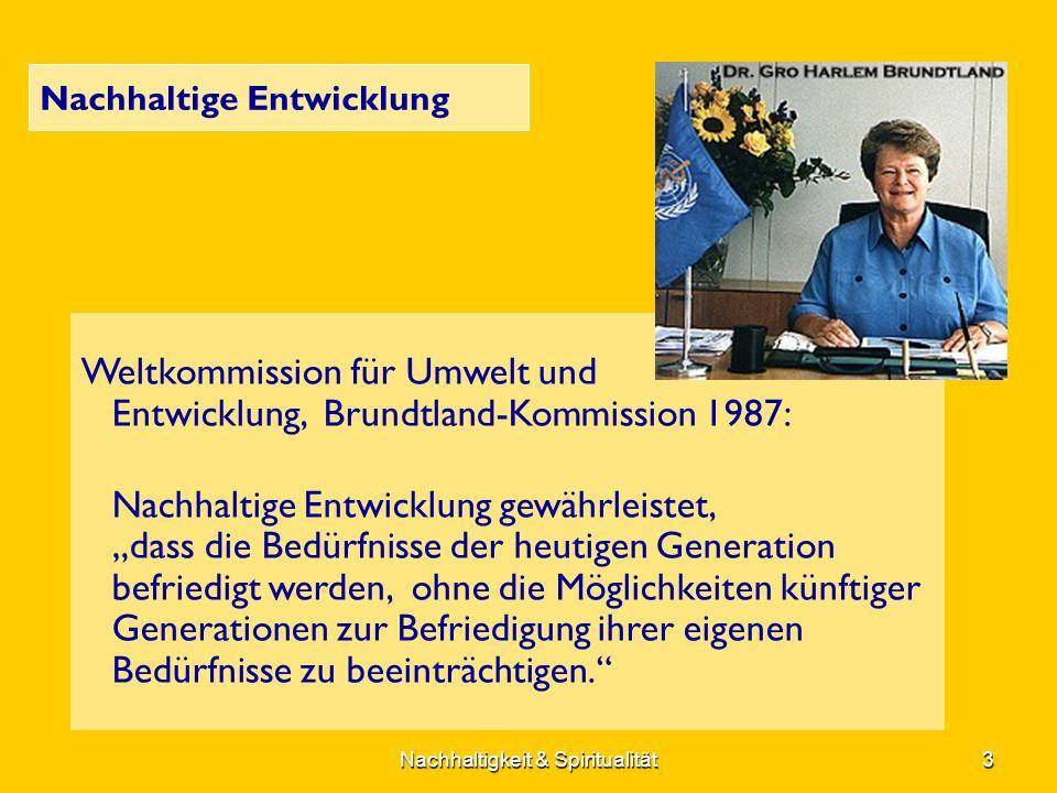 Nachhaltige Entwicklung Weltkommission für Umwelt und Entwicklung, Brundtland-Kommission 1987: Nachhaltige Entwicklung gewährleistet, dass die Bedürfnisse der heutigen Generation befriedigt werden, ohne die Möglichkeiten künftiger Generationen zur Befriedigung ihrer eigenen Bedürfnisse zu beeinträchtigen.