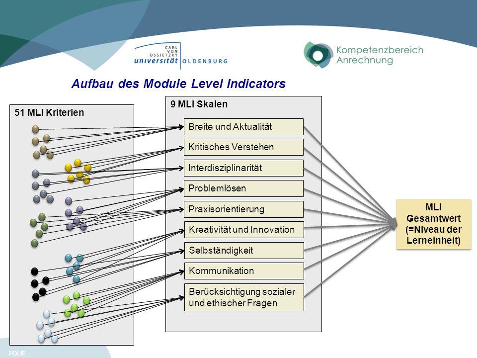FOLIE 51 MLI Kriterien 11 MLI Gesamtwert (=Niveau der Lerneinheit) 9 MLI Skalen Breite und Aktualität Kritisches Verstehen Interdisziplinarität Proble