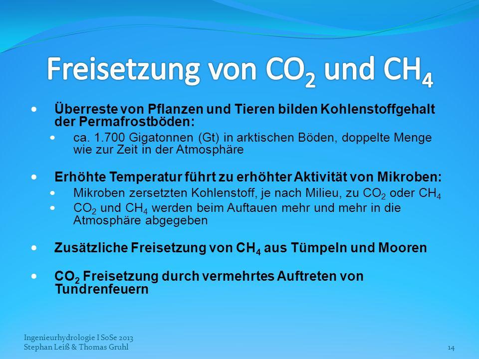 Ingenieurhydrologie I SoSe 2013 Stephan Leiß & Thomas Gruhl14 Überreste von Pflanzen und Tieren bilden Kohlenstoffgehalt der Permafrostböden: ca. 1.70