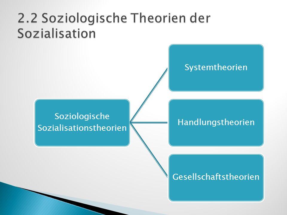 Soziologische Sozialisationstheorien SystemtheorienHandlungstheorienGesellschaftstheorien