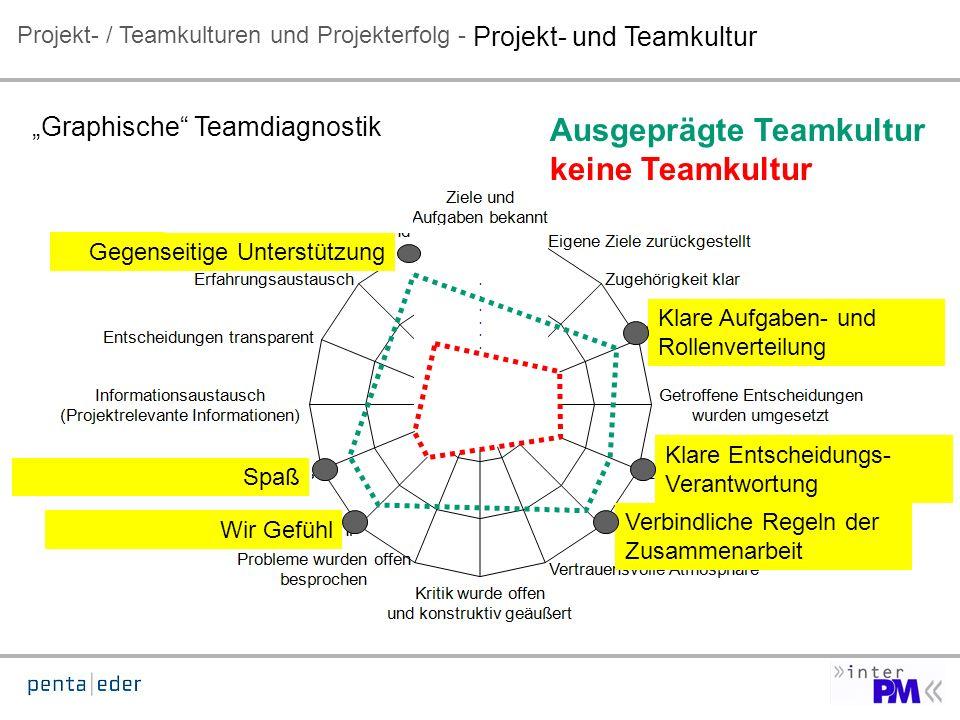 Projekt- / Teamkulturen und Projekterfolg - Graphische Teamdiagnostik 100 %.......
