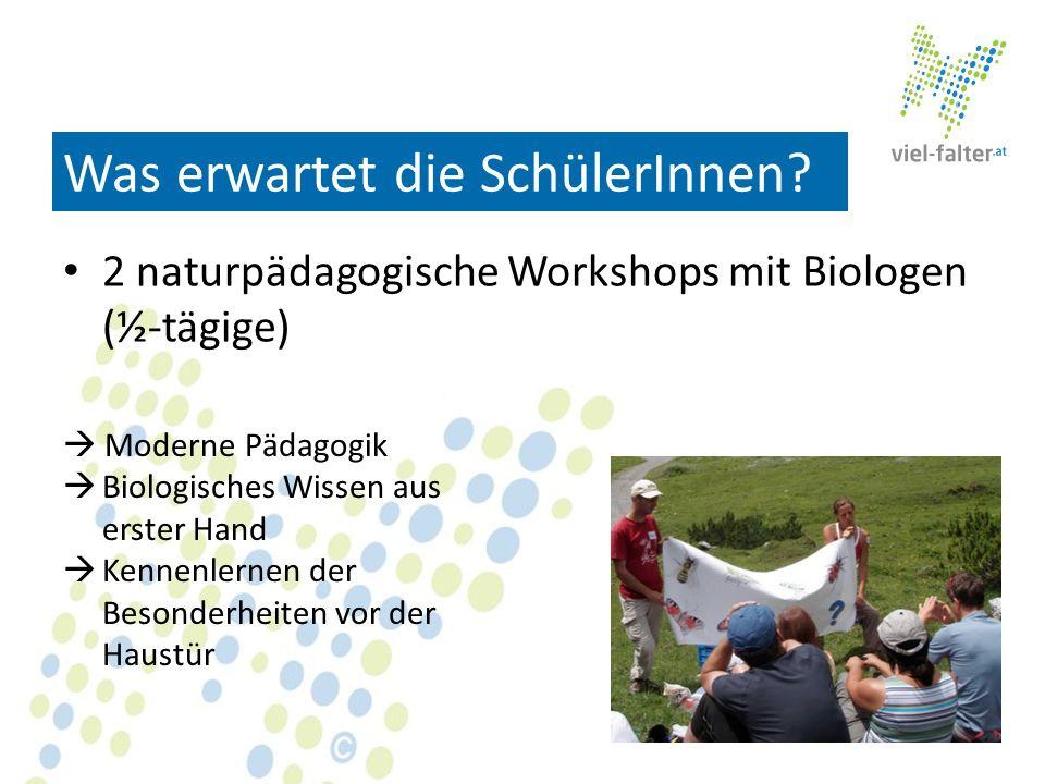 Was erwartet die SchülerInnen? 2 naturpädagogische Workshops mit Biologen (½-tägige) Moderne Pädagogik Biologisches Wissen aus erster Hand Kennenlerne