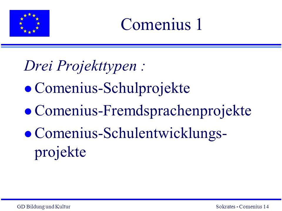GD Bildung und Kultur Sokrates - Comenius 14 14 Comenius 1 Drei Projekttypen : l Comenius-Schulprojekte l Comenius-Fremdsprachenprojekte l Comenius-Schulentwicklungs- projekte