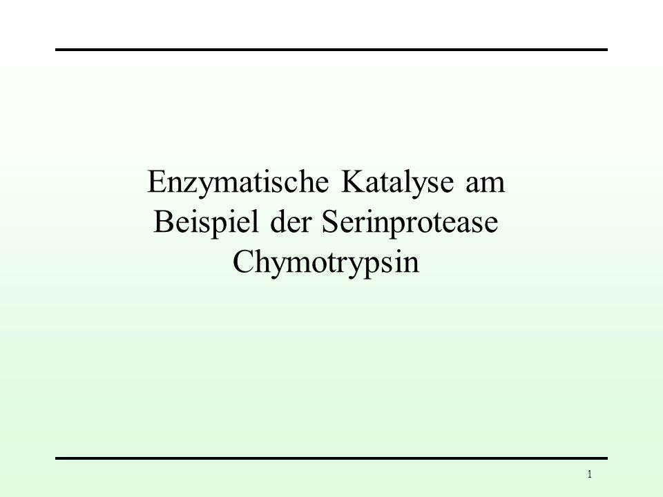 1 Enzymatische Katalyse am Beispiel der Serinprotease Chymotrypsin